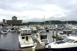 Yachts docked in Vancouver harbor with Westin Bayshore hotel in background